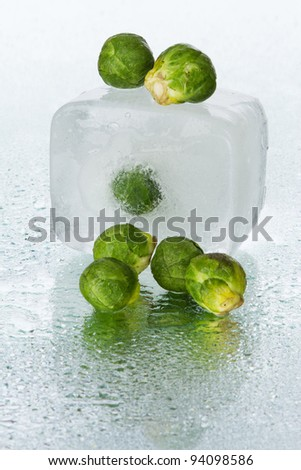 Brussels sprout on wet surface, studio still life - stock photo