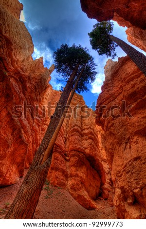 Bryce Canyon National Park Utah USA - stock photo