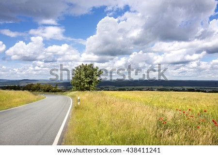 Bucha, Thuringia, Germany: Scenery with yellow cornfield, green tree, blue cloudy sky and lonely tarred road