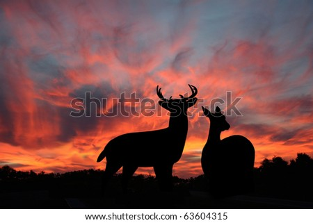 Buck and Doe Whitetail Deer Silhouetted Against a Spectacular Sunset - stock photo