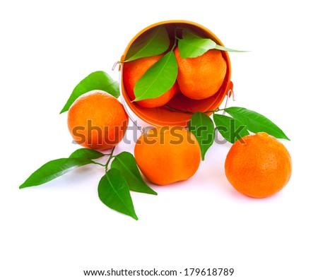 Bucket of fresh mandarins fall down in the studio, fresh green leaves, tasty sweet juicy fruits, exotic tangerine, vitamin eating concept - stock photo