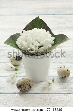 Bucket with snowdrops and quail eggs over white wood background