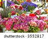 Buckets of flowers for sale in a stall at a farmer's market in summer - stock photo