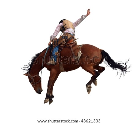 Bucking Rodeo Horse isolated with clipping path - stock photo
