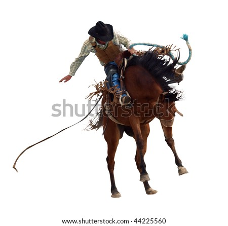 Bucking Rodeo Horse isolated with clipping path