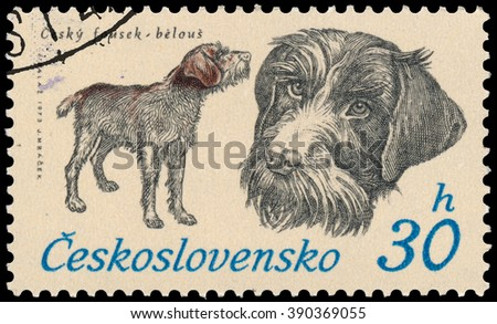 BUDAPEST, HUNGARY - 12 march 2016:  a stamp printed in Czechoslovakia shows Czech Whisker, circa 1973 - stock photo