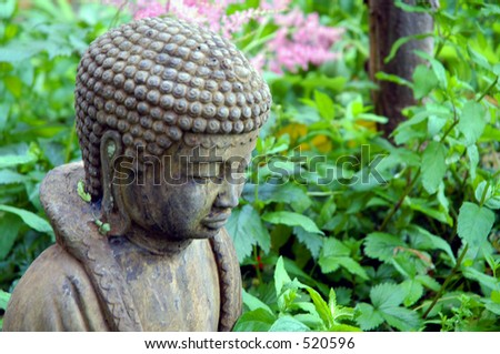 Budda - stock photo