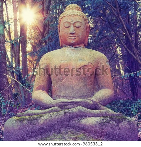 Buddha - stock photo