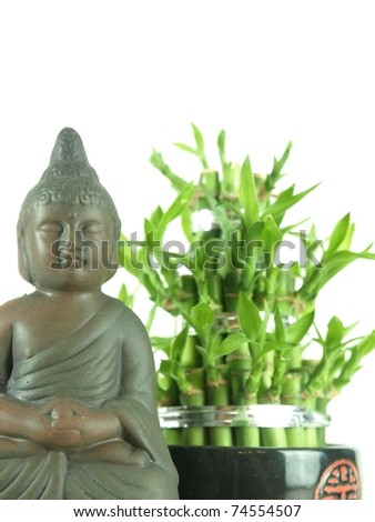 Buddha and lucky bamboo