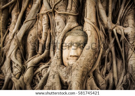 medicine park buddhist singles A university like no other  cookies on northeastern sites this website uses cookies and similar technologies to understand your use of our website and give you a.