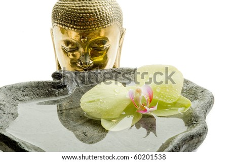 buddha head with orchid spa concept - stock photo