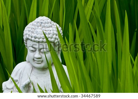 Buddha shows the way - stock photo