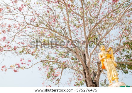 buddha statue and background flower.
