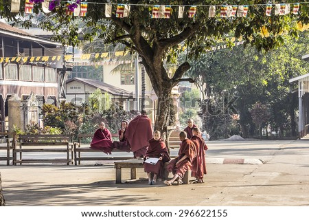 Buddhist monks are stuying beneath a tree at the courtyard of the monastery. - stock photo