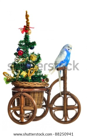 Budgerigar carrying new year tree on the tricycle, isolated - stock photo