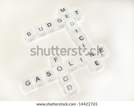 Budget crossword  puzzle
