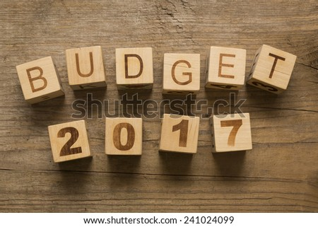 Budget for 2017 wooden, blocks on a wooden background - stock photo