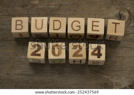 Budget for 2024 wooden, blocks on a wooden background - stock photo