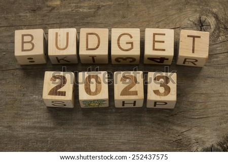 Budget for 2023 wooden, blocks on a wooden background - stock photo