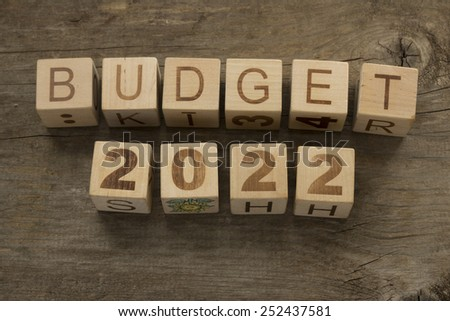 Budget for 2022 wooden, blocks on a wooden background - stock photo