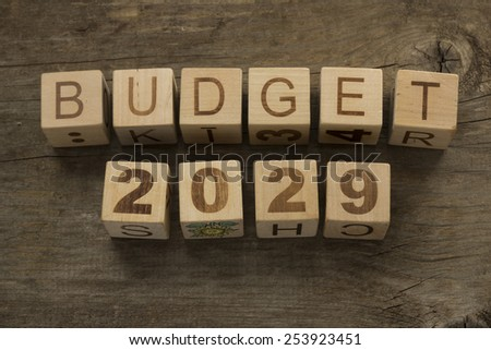 Budget for 2029 wooden, blocks on a wooden background - stock photo