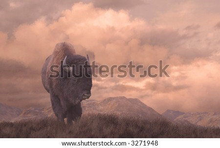 Buffalo / An original 15x24 painting of a buffalo on the Wyoming prairie. / AW-016 - stock photo