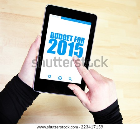 buget for 2015 - stock photo