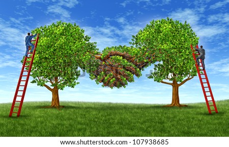 Building business trust and growing a financial partnership through an agreement as two growing trees merging together in a hand shake shape with  businessmen on ladders working together for success. - stock photo