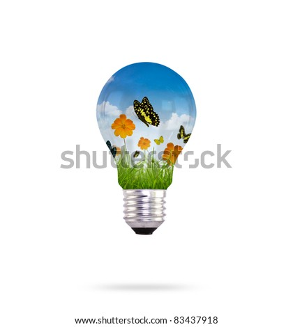 Bulb and  fresh spring green grass with  butterfly - stock photo