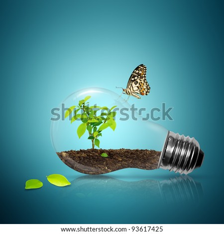 Bulb light with tree inside and leaf have butterfly - stock photo