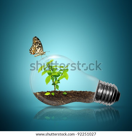 Bulb light with tree inside have butterfly on blue background - stock photo