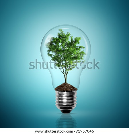Bulb light with tree inside on blue background - stock photo