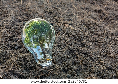 Bulb with plant growing inside - stock photo