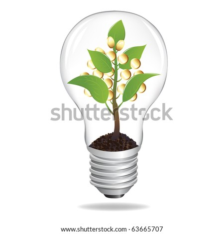 Bulb With Sprout And Coins, Isolated On White Background