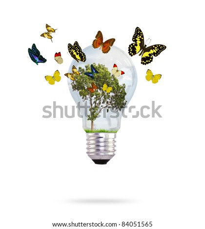 Bulb with tree and butterfly - stock photo
