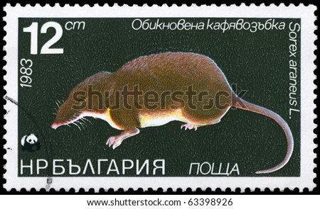 """BULGARIA - CIRCA 1983: A Stamp printed in BULGARIA shows image of a Common Shrew with the description """"Sorex araneus"""" from the series """"Various bats and rodents"""", circa 1983 - stock photo"""