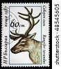 BULGARIA - CIRCA 1987: A stamp printed in Bulgaria shows Reindeer - Rangifer tarandus, circa 1987 - stock photo