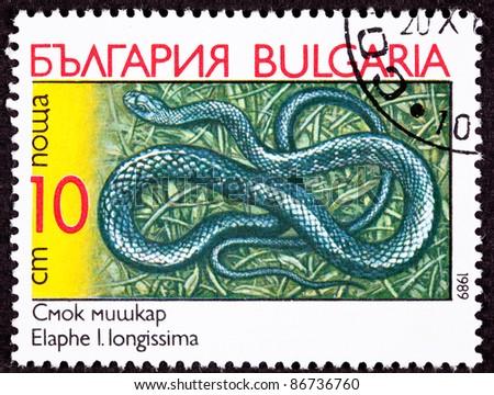 BULGARIA - CIRCA 1989:  A stamp printed in Bulgaria shows the Aesculapian Rat Snake, Elaphe longissima also known as Zamenis longissimus, circa 1989. - stock photo