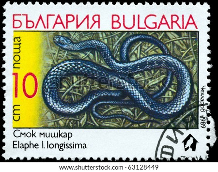 "BULGARIA - CIRCA 1989: A Stamp printed in BULGARIA shows the image of a Aesculapian Snake with the description ""Elaphe longissima"" from the series ""Snakes"", circa 1989 - stock photo"
