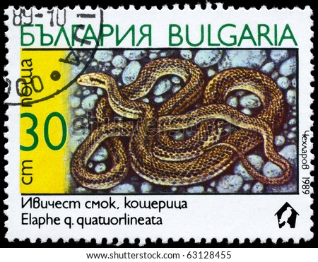 "BULGARIA - CIRCA 1989: A Stamp printed in BULGARIA shows the image of a Four-lined Snake with the description ""Elaphe quatuorlineata"" from the series ""Snakes"", circa 1989 - stock photo"