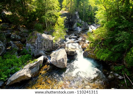 bulgarian cold forest stream in summer time - stock photo