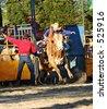 Bull Rider 1 - stock photo