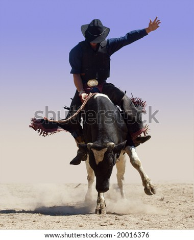 Bull rider isolated with clipping path - stock photo