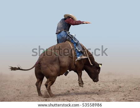 Bull Rider on a clear background - stock photo