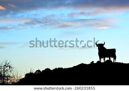 Bull sign in Spain - stock photo