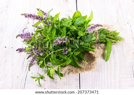 Bunch blooming mint on a wooden background.