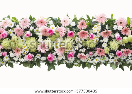 bunch flowers isolated on white background - stock photo