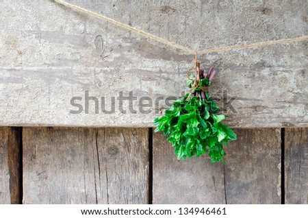 Bunch fresh mint on the wooden background,selective focus - stock photo