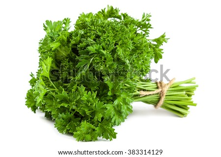 Bunch fresh parsley isolated on white background. - stock photo