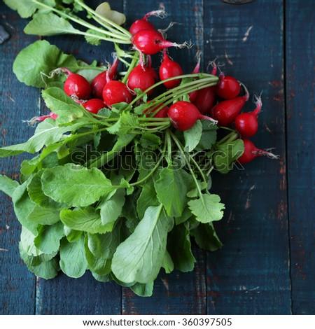 bunch fresh radish on table, food top view - stock photo